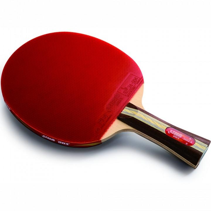 Ракетка для настольного тенниса DHS R3002B