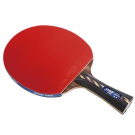 Ракетка для настольного тенниса DHS 5002С