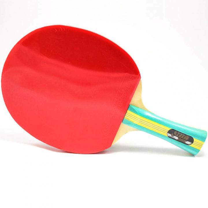 Ракетка для настольного тенниса DHS S202