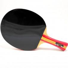 Ракетка для настольного тенниса DHS S203